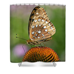 Shower Curtain featuring the photograph Butterflies In The Wild by Stephen Flint