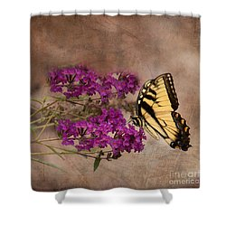 Butterfly , Eastern Tiger Swallowtail Shower Curtain