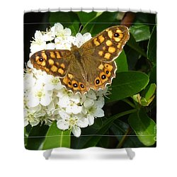 Shower Curtain featuring the photograph Butterfly 1 by Jean Bernard Roussilhe