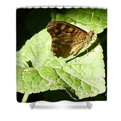 Shower Curtain featuring the photograph Butterfly 2 by Jean Bernard Roussilhe
