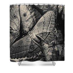 Butterfly #2056 Shower Curtain by Andrey Godyaykin