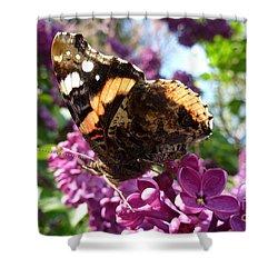 Butterfly 7 Shower Curtain by Jean Bernard Roussilhe