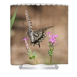 Butterfly And Flower Shower Curtain