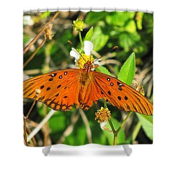 Butterfly At Canaveral National Seashore Shower Curtain
