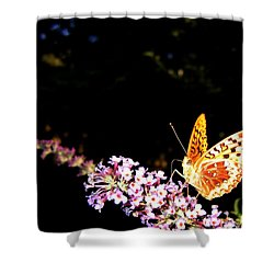 Butterfly Banquet 1 Shower Curtain by Will Borden