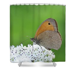 Shower Curtain featuring the photograph Butterfly by Bess Hamiti