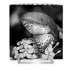 Butterfly Bw - Ins18 Shower Curtain by G L Sarti