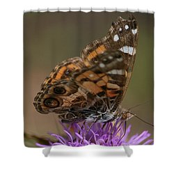 Shower Curtain featuring the photograph Butterfly by Cathy Harper