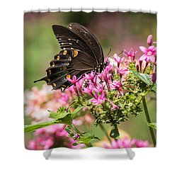Shower Curtain featuring the photograph Butterfly Dream by Julie Andel
