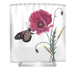 Butterfly Dreaming Shower Curtain by Stanza Widen