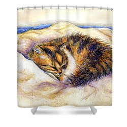 Shower Curtain featuring the drawing Butterfly Dreams by Retta Stephenson