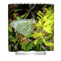 Butterfly Feasting On Yellow Flowers Shower Curtain