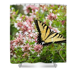 Shower Curtain featuring the photograph Butterfly Haven by Julie Andel