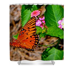Shower Curtain featuring the photograph Butterfly In Flight 002 by George Bostian