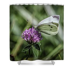 Butterfly In Love Shower Curtain