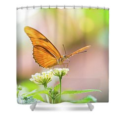 Butterfly - Julie Heliconian Shower Curtain
