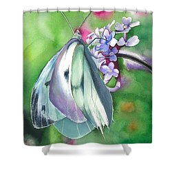 Butterfly Kisses Shower Curtain by Maya Marcotte