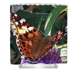 Butterfly Landing Shower Curtain