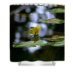 Butterfly Lily Pad Shower Curtain