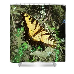 Butterfly Magic Shower Curtain