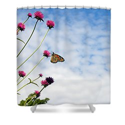 Shower Curtain featuring the photograph Butterfly Magic by Teresa Schomig