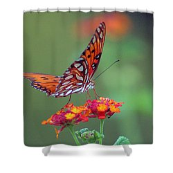 Butterfly Majestic Shower Curtain