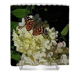 Butterfly On Hydrangea Shower Curtain