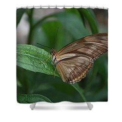 Shower Curtain featuring the photograph Butterfly On Leaf by Cathy Harper