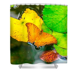 Butterfly On Lilies Shower Curtain by Jerry Cahill
