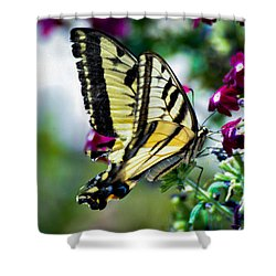 Butterfly On Purple Flowers Shower Curtain