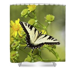 Butterfly On Yellow Shower Curtain