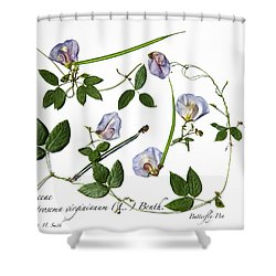 Butterfly Pea Shower Curtain