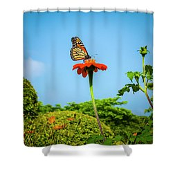 Butterfly Perch Shower Curtain