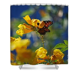 Butterfly Pollinating Flowers  Shower Curtain by Donna Greene