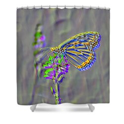 Shower Curtain featuring the photograph Butterfly Study by Mitch Shindelbower