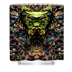 Butterfly Tiger Shower Curtain