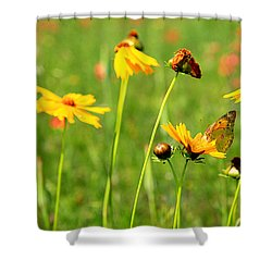 Butterfly  Shower Curtain by Toni Hopper