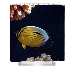 Butterflyfish Closeup Shower Curtain