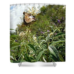 Butterly Flowers Shower Curtain
