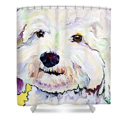 Buttons    Shower Curtain by Pat Saunders-White