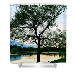Buttonwood Sunset Shower Curtain by Kate Arsenault