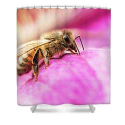 Buzz Shower Curtain