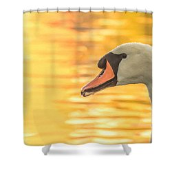 By Dawn's Light Shower Curtain