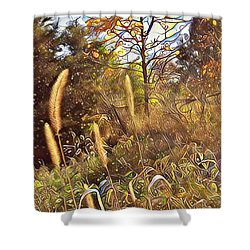 By The Railroad Tracks Shower Curtain
