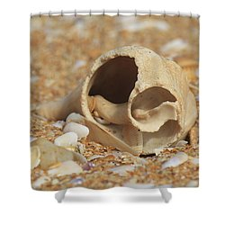 By The Sea Shore Shower Curtain