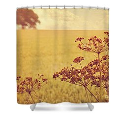 Shower Curtain featuring the photograph By The Side Of The Wheat Field by Lyn Randle