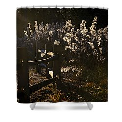 Shower Curtain featuring the photograph By The Way by Steven Sparks