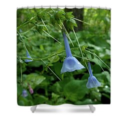 Bye Bye Bluebells Shower Curtain