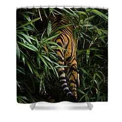 Shower Curtain featuring the photograph Bye by Cheri McEachin