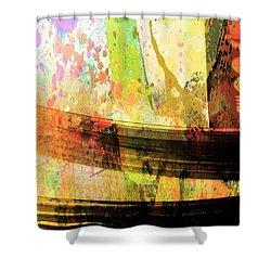 C D Art Shower Curtain